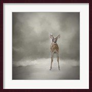 Stand Strong Little Fawn