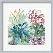 Succulent Garden Watercolor II