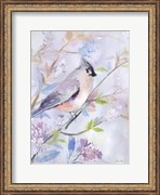 Pastel Birds 1