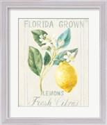 Floursack Lemon I