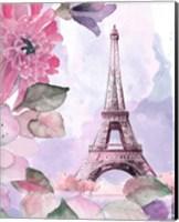 Framed Parisian Blossoms I
