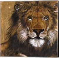 Framed Lion on Gold