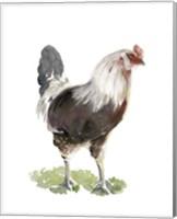 Framed Chicken Dance I