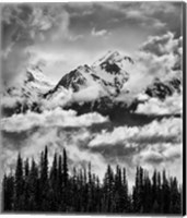 Framed Mount Carrie And Carrie Glacier, Washington (BW)