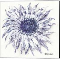 Framed Blue Sunflower