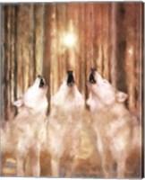 Framed Three Wolf Howl