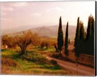 Framed Toscana, Italia No. 709