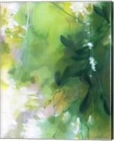 Framed Verdant Shallows II