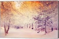 Framed Snowy Sunrise