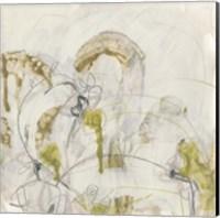 Framed Arctic Lichen I