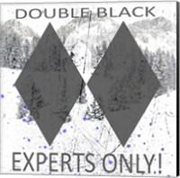 Framed Extreme Snowboarder Double Black
