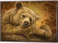 Framed Sleepy Bear