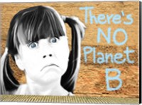 Framed No Planet B