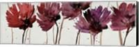 Framed Blushing Blooms