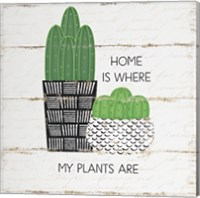 Framed Home is Where My Plants Are