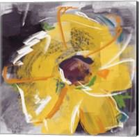 Framed Sketchy Sunflower