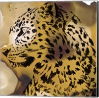 Framed Leopard Portrait I