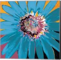 Framed Sunshine Flower II