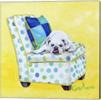 Framed Bulldog on Polka Dots
