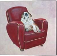 Framed Bulldog on Red