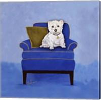 Framed Westie on Blue