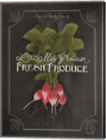Framed Fresh Radishes