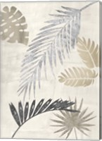 Framed Palm Leaves Silver III