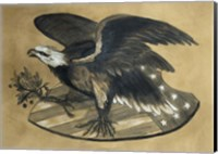 Framed Antique Eagle
