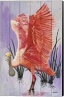 Framed Spoonbill