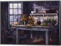 Framed Sunlight Suite