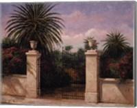 Framed Palm Gate I