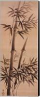 Framed Bamboo Forever I