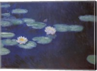 Framed NYMPHEAS, 1897/1898
