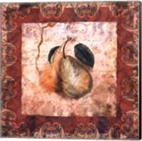 Framed Tuscany Pears