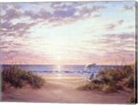 Framed Paradise Dawn