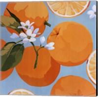 Framed Fresh Oranges