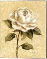 Framed Elegant Rose