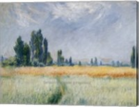 Framed Wheatfield, 1881