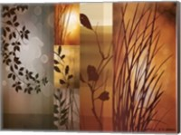 Framed Autumnal Equinox
