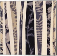 Framed Botanica 1