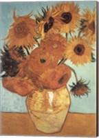 Framed Sunflower on Blue, c.1888