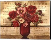 Framed Paris Rose II