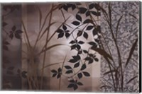 Framed Silver Whispers I