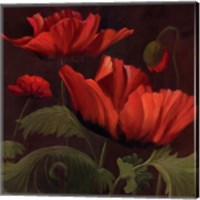 Framed Vibrant Red Poppies II