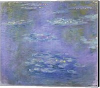 Framed Nympheas, 1903