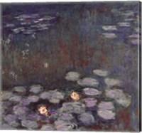 Framed Water Lilies (dark)