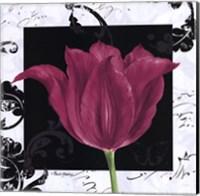 Framed Damask Tulip IV