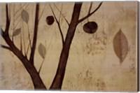 Framed Lyrical Branches I
