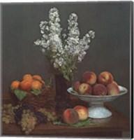 Framed Bouquet de Julienne et Fruits