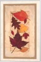 Framed Autumn Harvest I